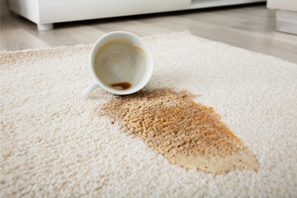 common carpet stains