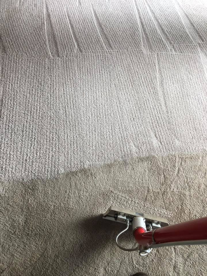 Carpet Cleaning Services Langley WA - 2
