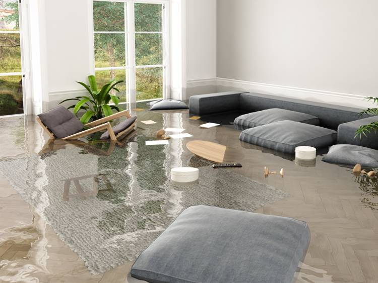Water Damage Services Whidbey Island WA